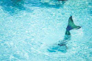 Meerjungfrau-im-Pool